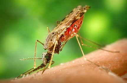 Malaria continues to be a threat in many parts of the world