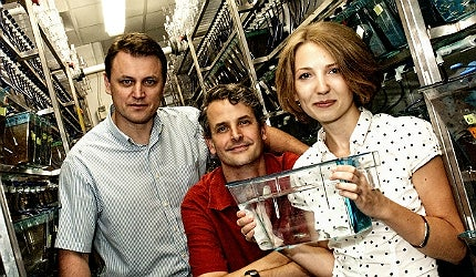 Researchers from Rice University