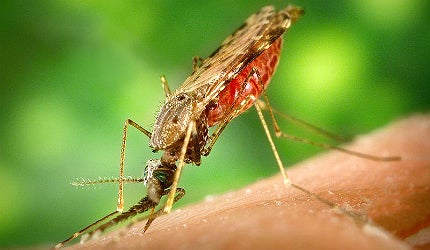The industry is also increasing development of treatments for tropical diseases